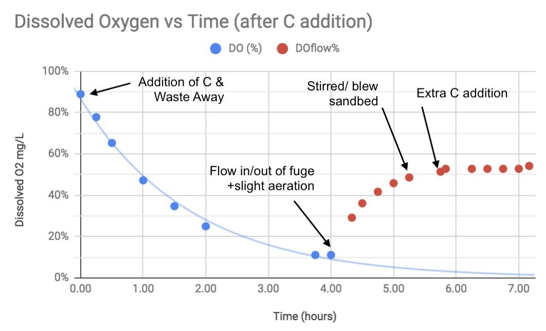 Oxygen Consumption Bloom.jpg