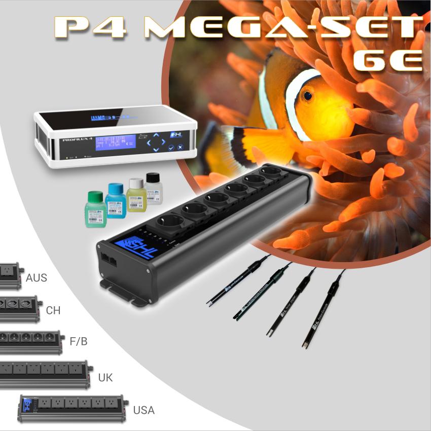 P4 Mega-Set 6E(1).png