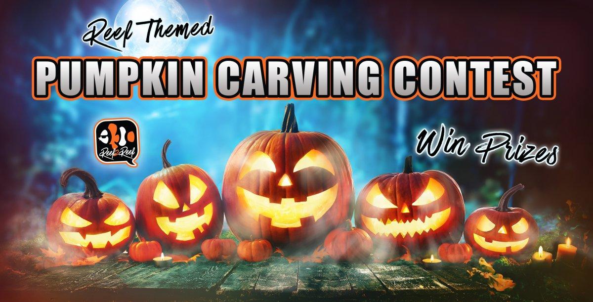 pumpkin carving contest.jpg