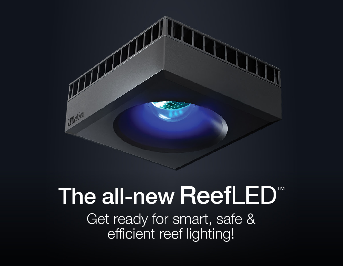 Sponsored Red Sea S All New Reefled Smart Reef Lighting