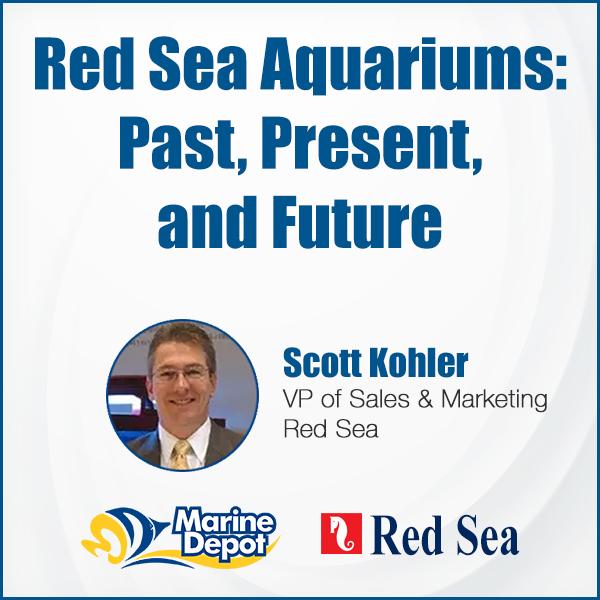 RED-SEA-FACEBOOK-600x600.jpg
