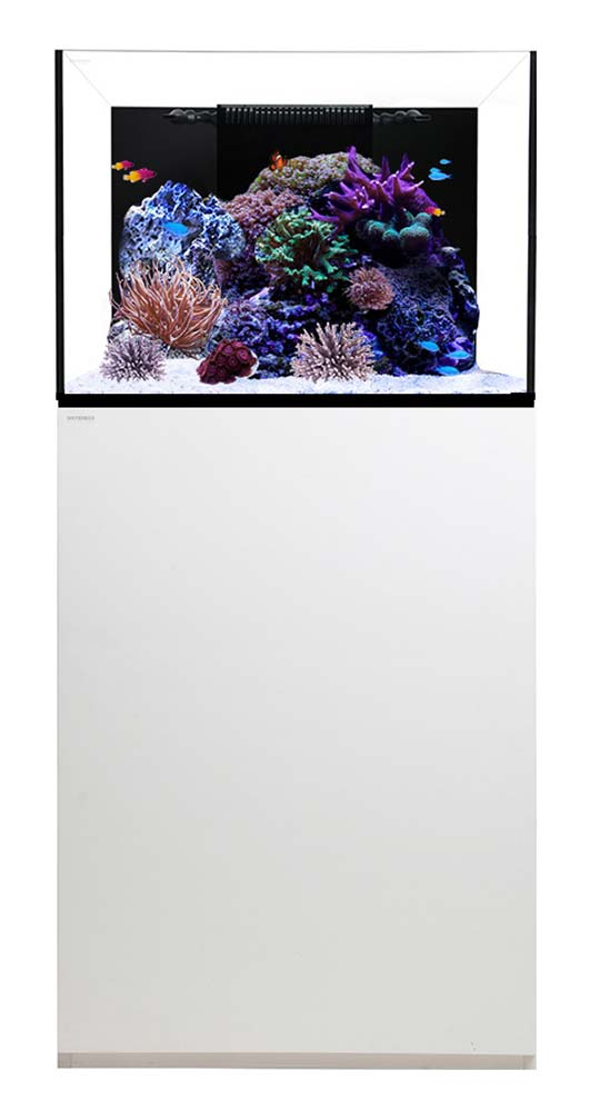 Reef-70.2-Waterbox-Aquarium-70-gallons-White-99.jpg