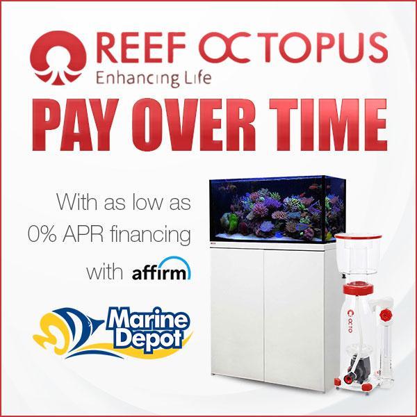 reef-octopus-0-apr-financing-social (1).jpg