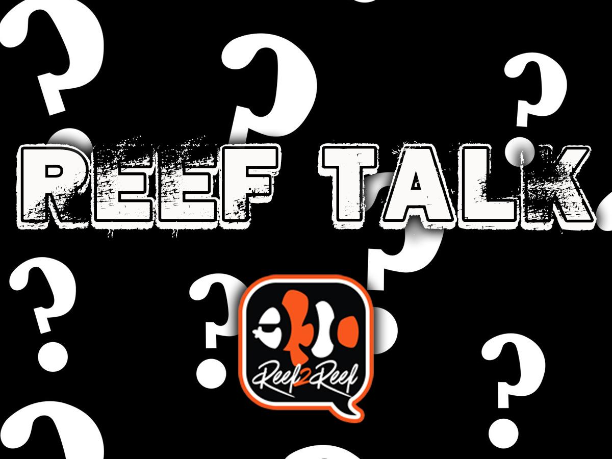 Reef Talk .png