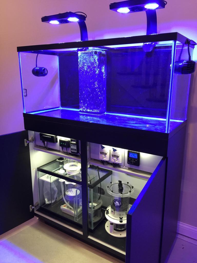 reef-tank-stand-sump-shelf.jpg