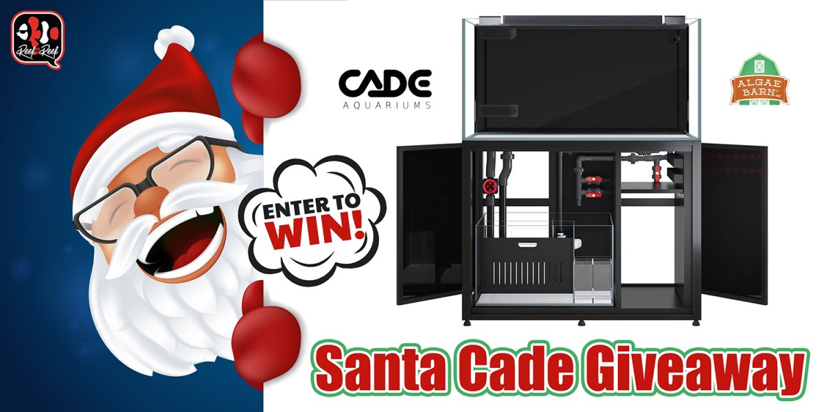 Santa Cade Christmas Giveaway.jpg