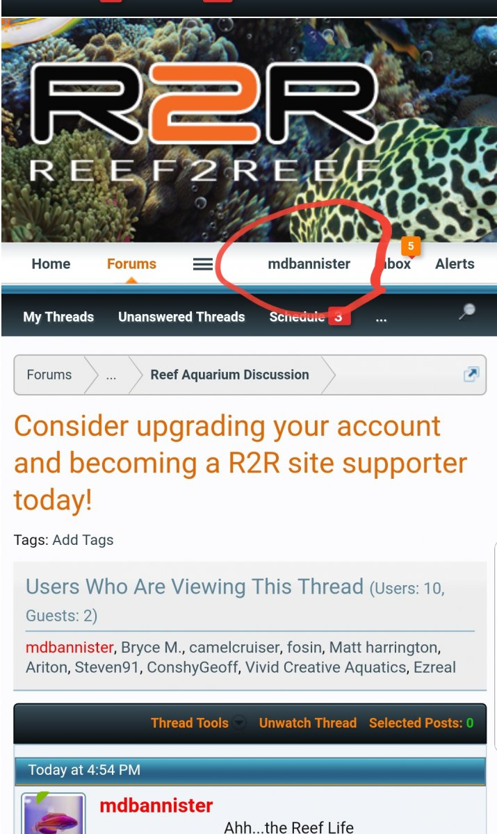 Consider upgrading your account and becoming a R2R site