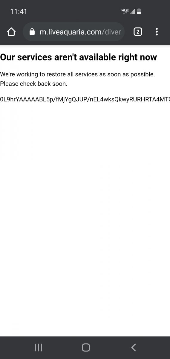 Screenshot_20210405-234139_Chrome.jpg