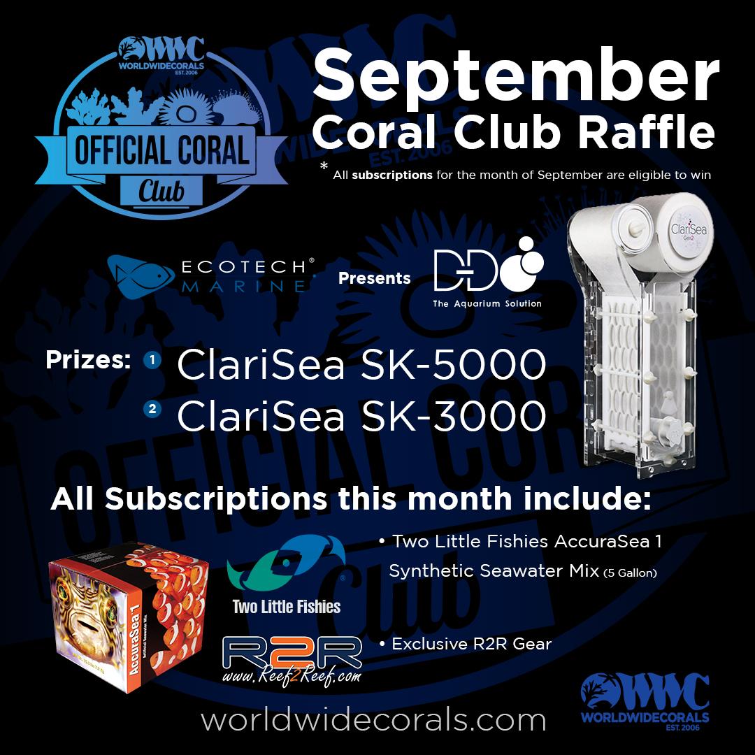september coral club raffle6.jpg