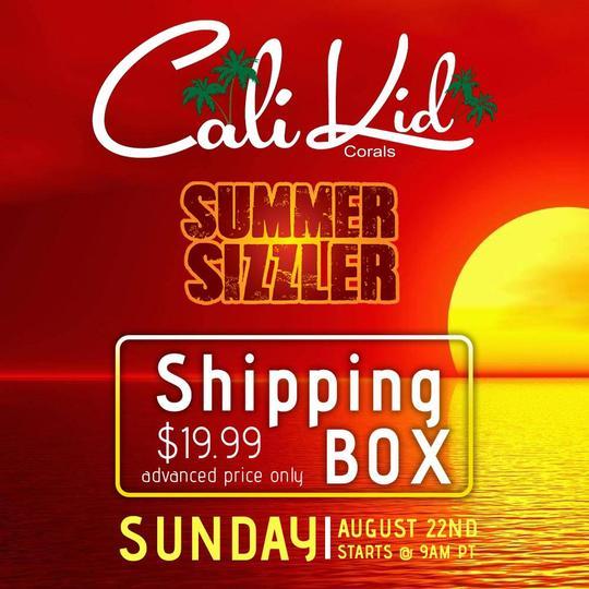 ShippingBox_Aug_15_Summer_Sizzle_cd1f52fb-7b24-4944-984f-176e992beedc_540x.jpg