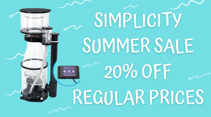 Simplicity Summer Sale.png