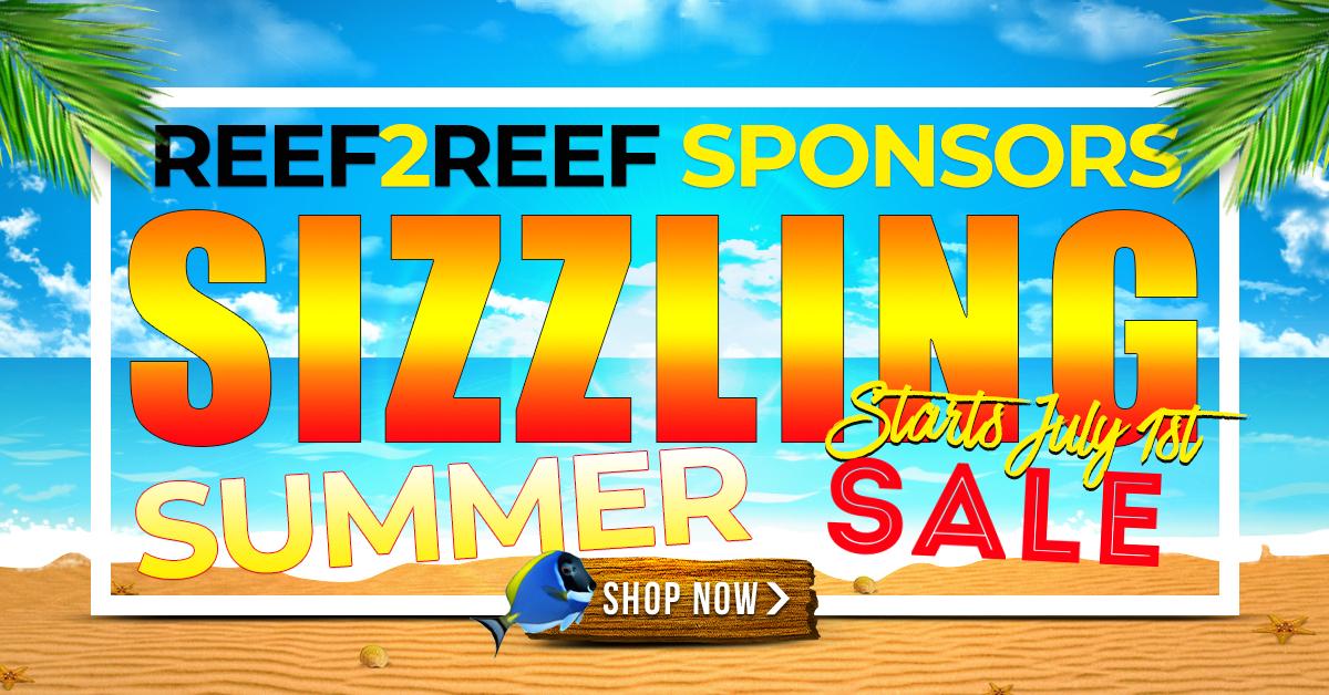 Sponsors Sizzling Summer Sales Event.jpg