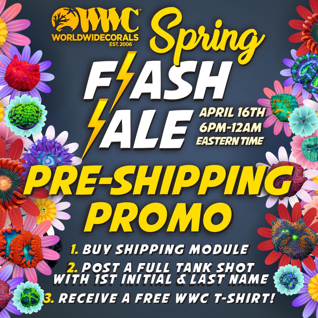 spring_flash_sale2021_PreShippingPromo.jpg