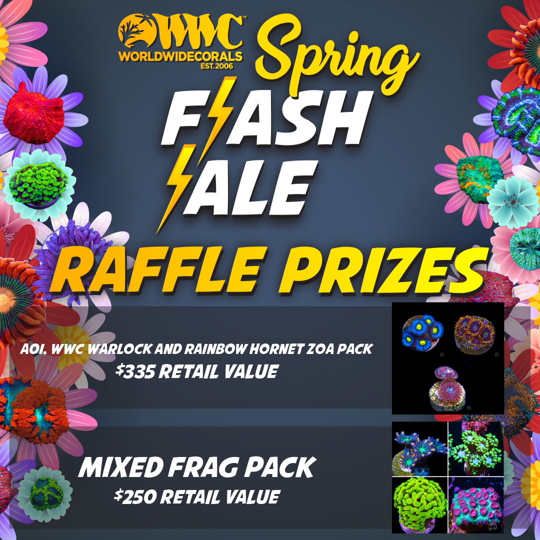 spring_flash_sale_raffleprizes1x1.jpg