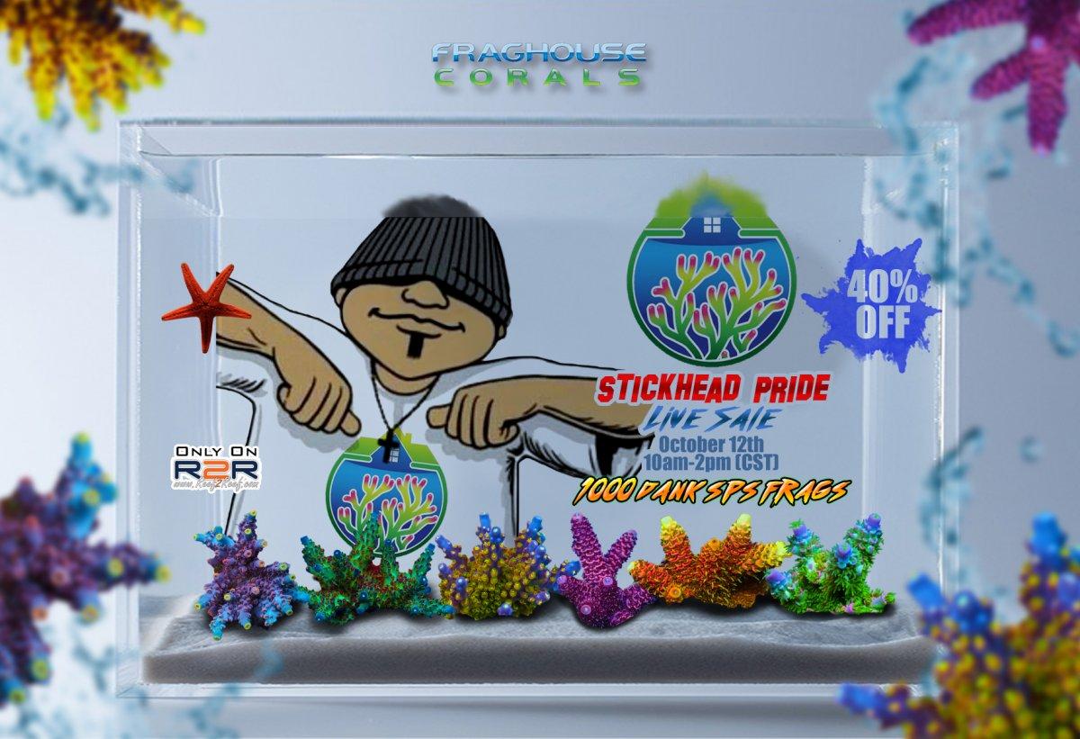 stickhead pride sale! FACEBOOK 6X4.jpg