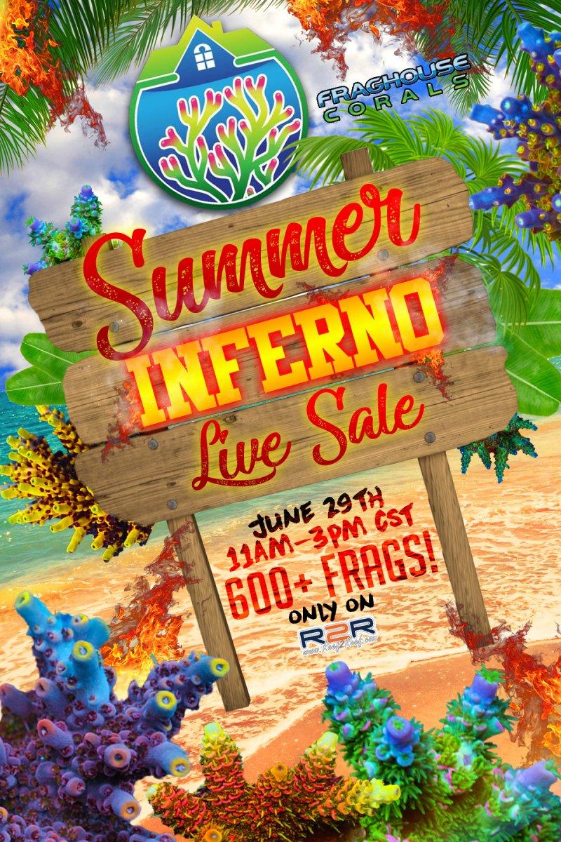 summer inferno live sale.jpg