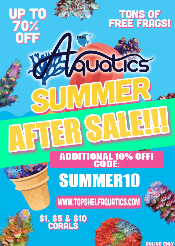 summersale3570x800.png