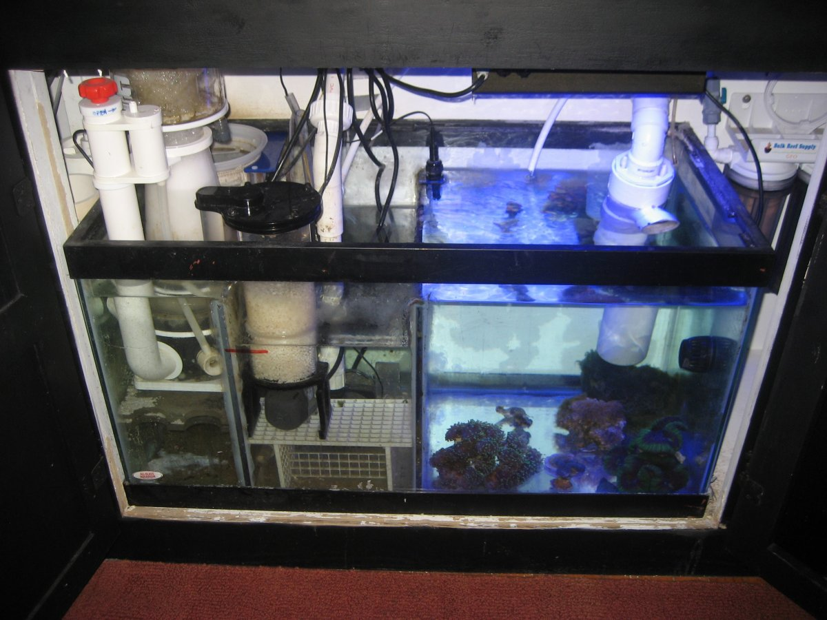 need help with a sump layout reef2reef saltwater and reef aquarium