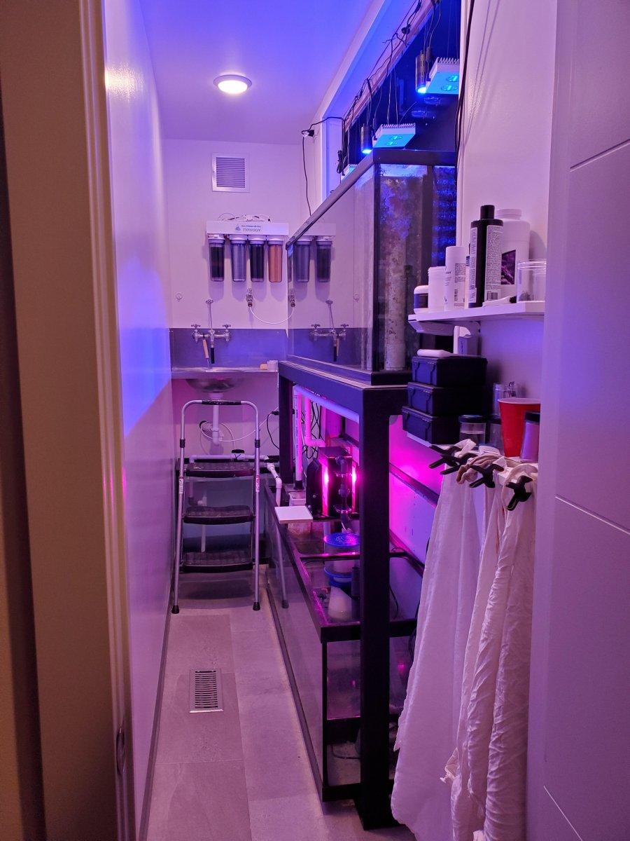 tank room.jpg