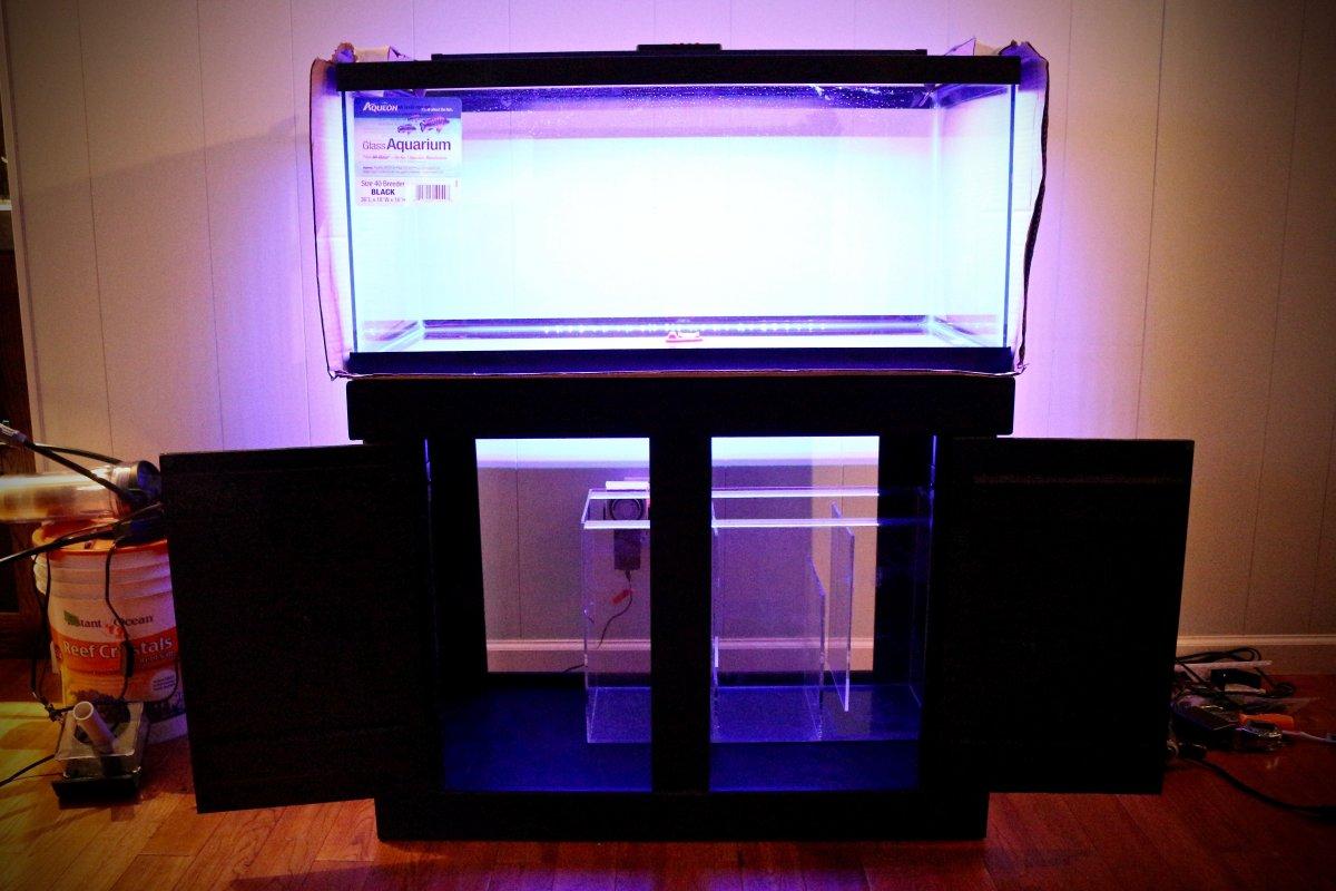 Tank build - 40g breeder | REEF2REEF Saltwater and Reef