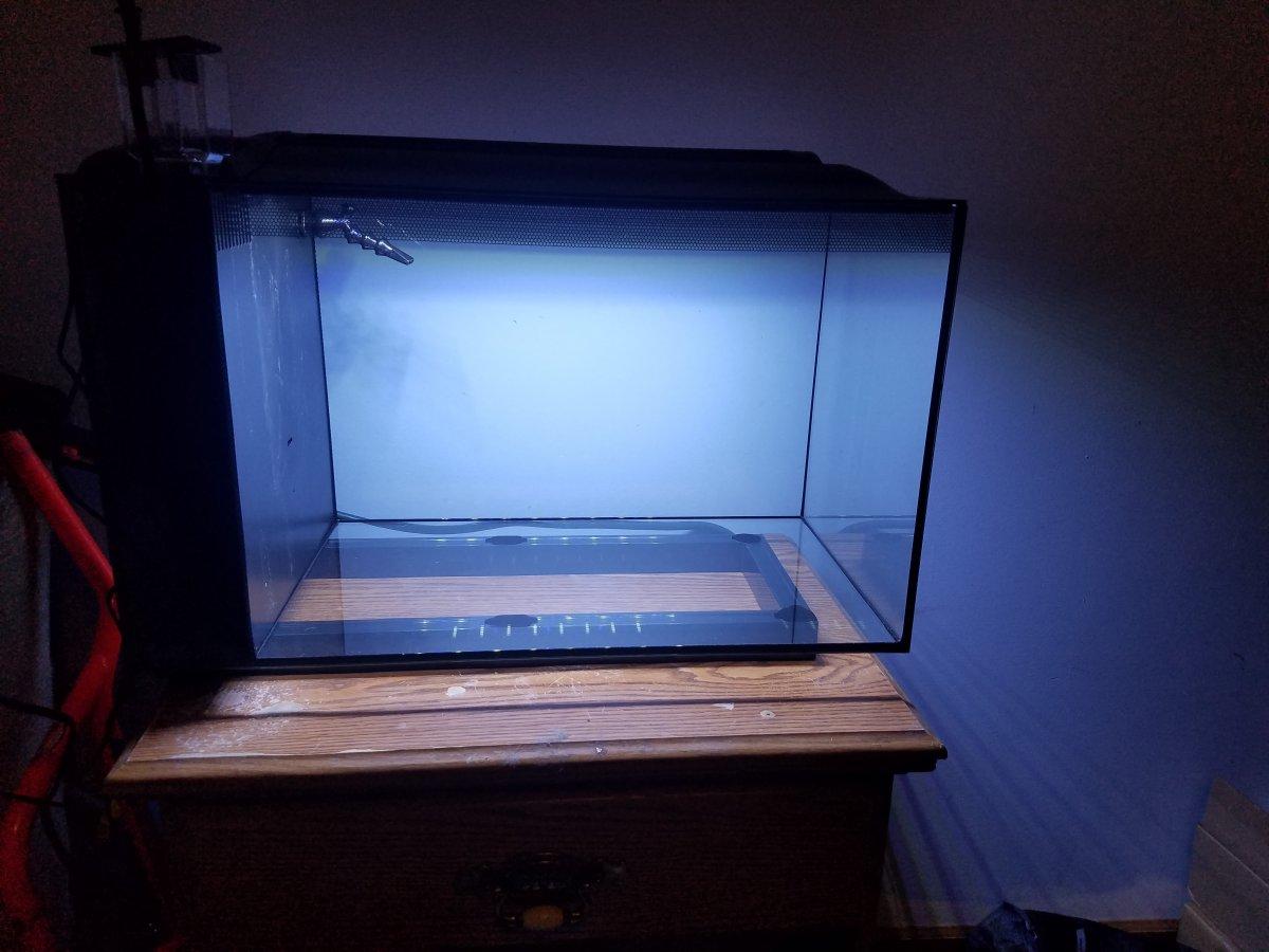 New Member W Fluval Evo 13 5 Build Reef2reef Saltwater
