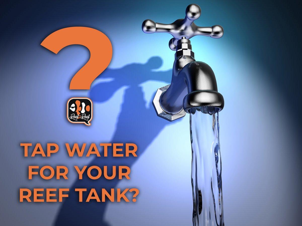 TAP WATER.jpg