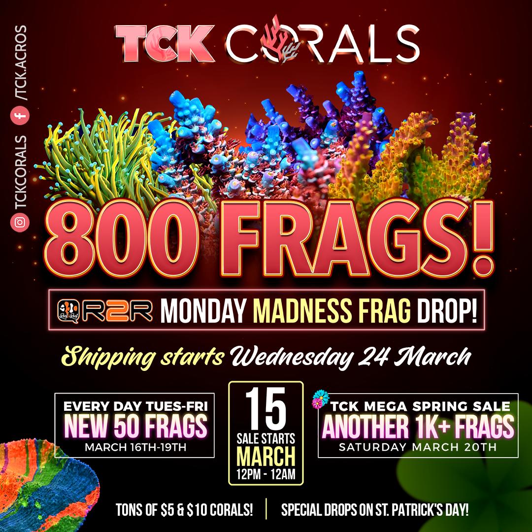 tck 800 frags Social Media Post Square 1080 x 1080.png