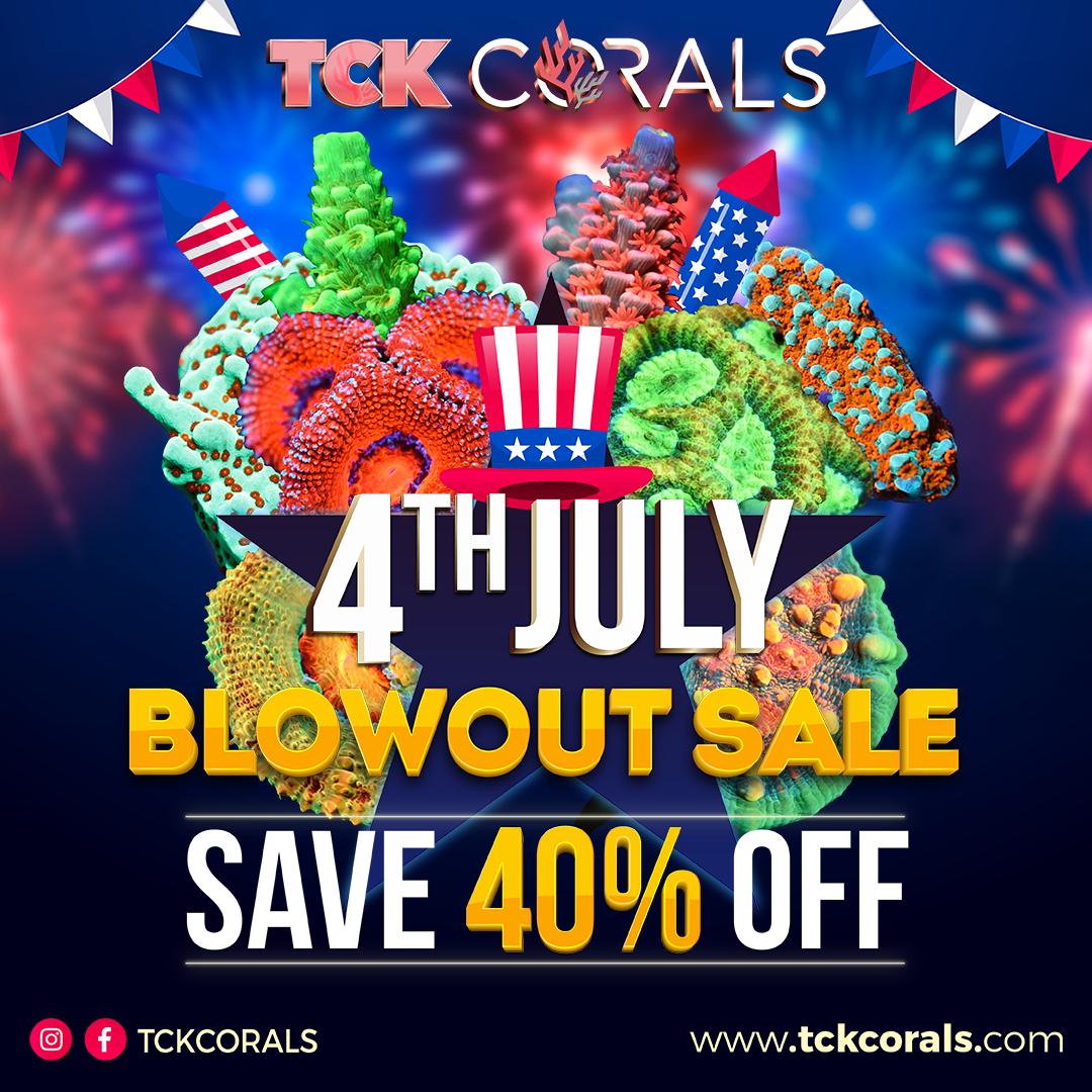 TCK CORALS BANNER 4TH OF JULY Social Media Post Square 1080 x 1080.png