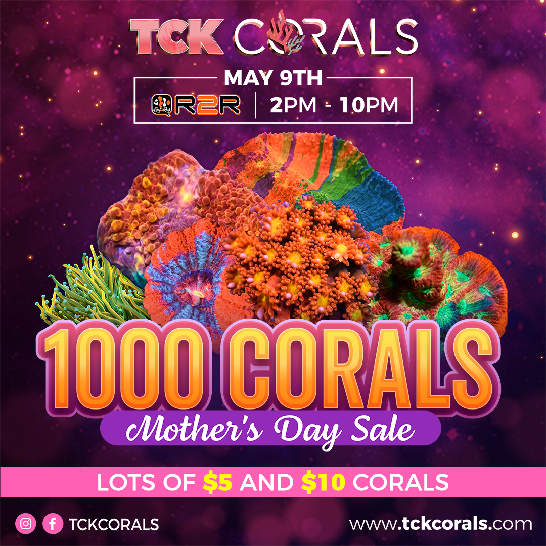 TCK MOTHER DAY 1000 CORALS Social Media Post Square 1080 x 1080.png