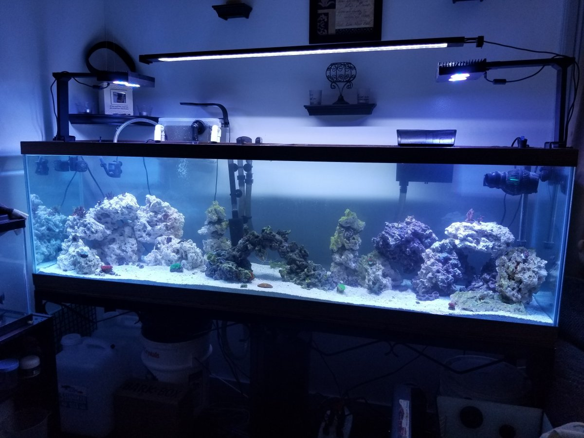 Diy Floating Recessed Light Fixture Canopy Reef2reef