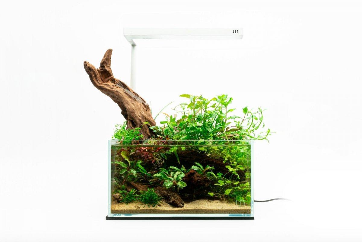 uns-25s-2-gallon-ultra-clear-rimless-aquarium-kit-13734830964817.jpg