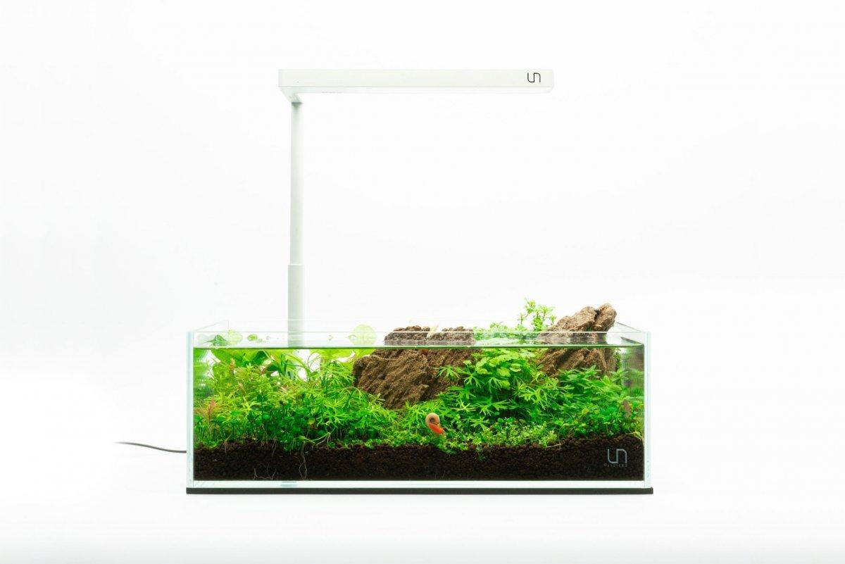 uns-5s-2-gallon-ultra-clear-rimless-aquarium-kit-13734837387345.jpg