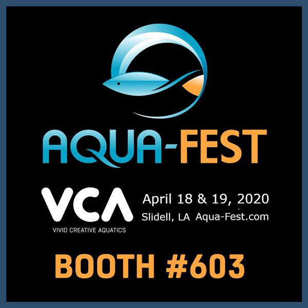 VCA-Aqua-fest-2020.jpg