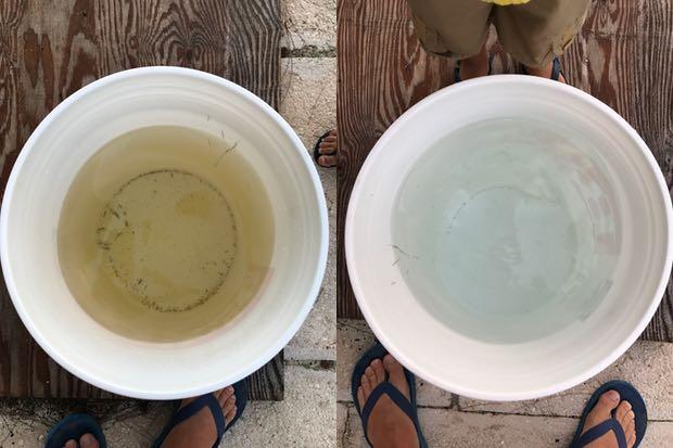 Water change.jpg