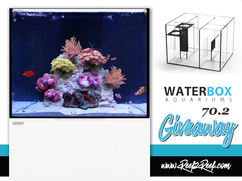 waterbox giveaway2.jpg