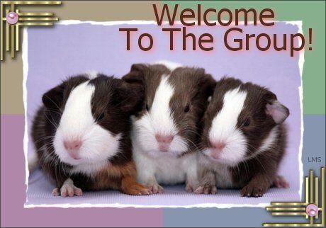 welcome12.jpg