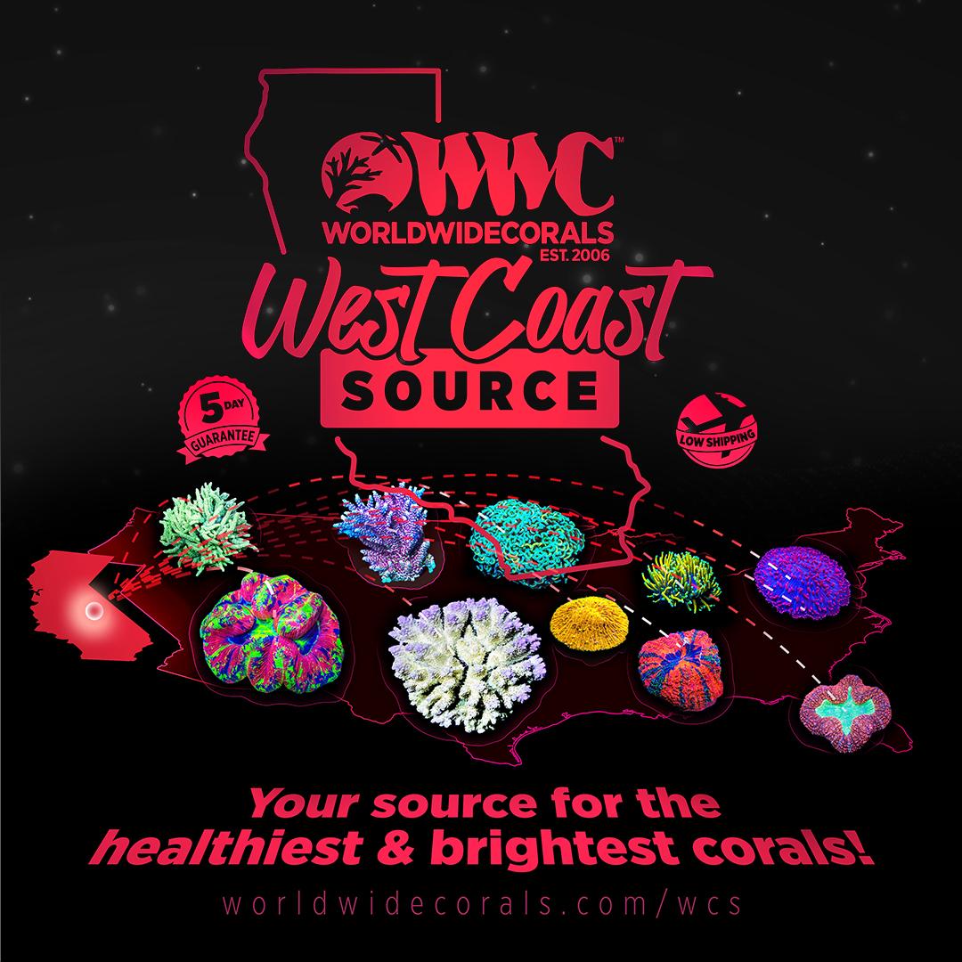 west-coast-source-graphic_SM1x1.jpg