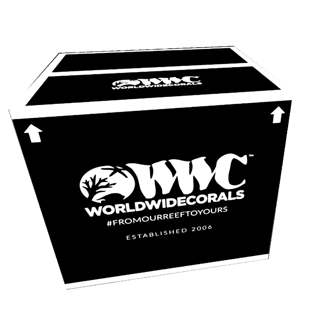 wwc-shipping-box_1800x1800.png