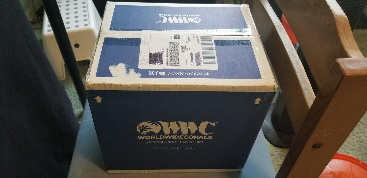 WWCGCbox.jpg