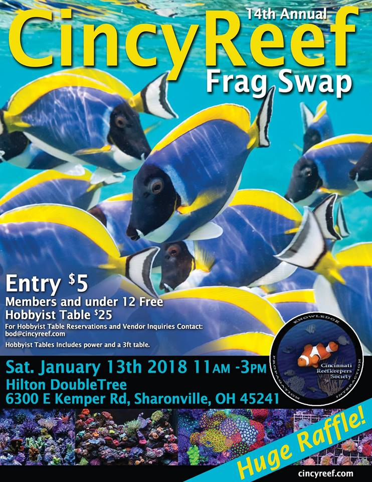 Cincy Reef Frag Swap (Cincinnati, Ohio) - January 13, 2018