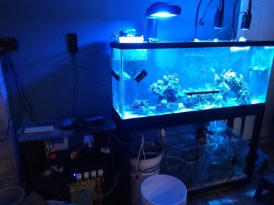 FTS w Stand 5-14.jpg