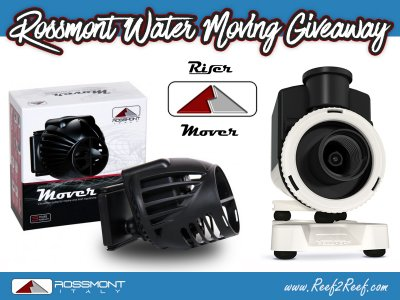 The ROSSMONT Water Moving Giveaway! Win a Mover & Riser!