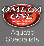OMEGA ONE3.png