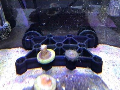 coral_frag_rack.jpg