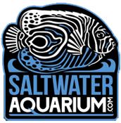 saltwateraquarium.png