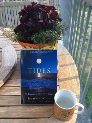 Book Review--Tides: The Science and Spirit of the Ocean by Jonathan White