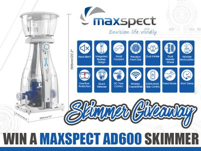 WIN A NEW AD600 SKIMMER FROM MAXSPECT! Let's Gooooooooo!