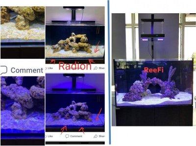radion_vs_reefi.jpg