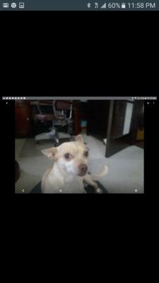 Screenshot_20190828-235840.png