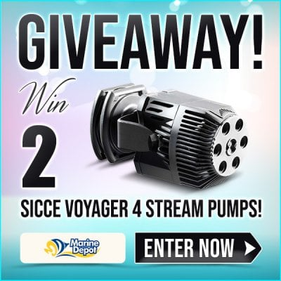 GIVEAWAY-Win-2-Sicce-Voyager-4-Steam-Pumps-social2.jpg
